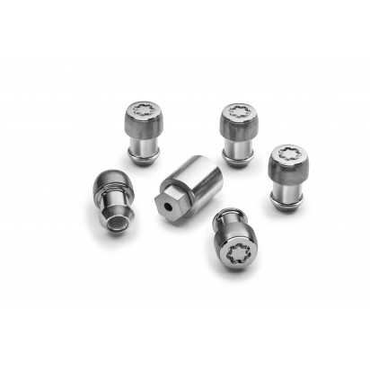SECURITY WHEELS BOLTS